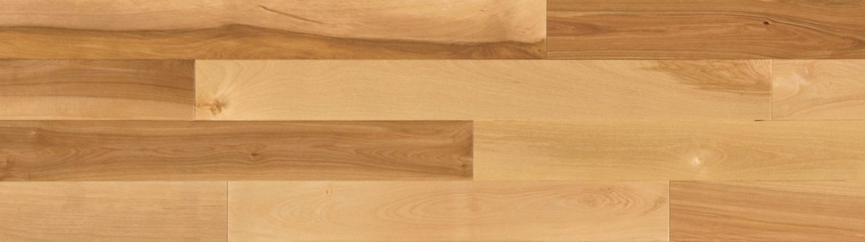 Hardwood floor | Yellow birch dubeau natural