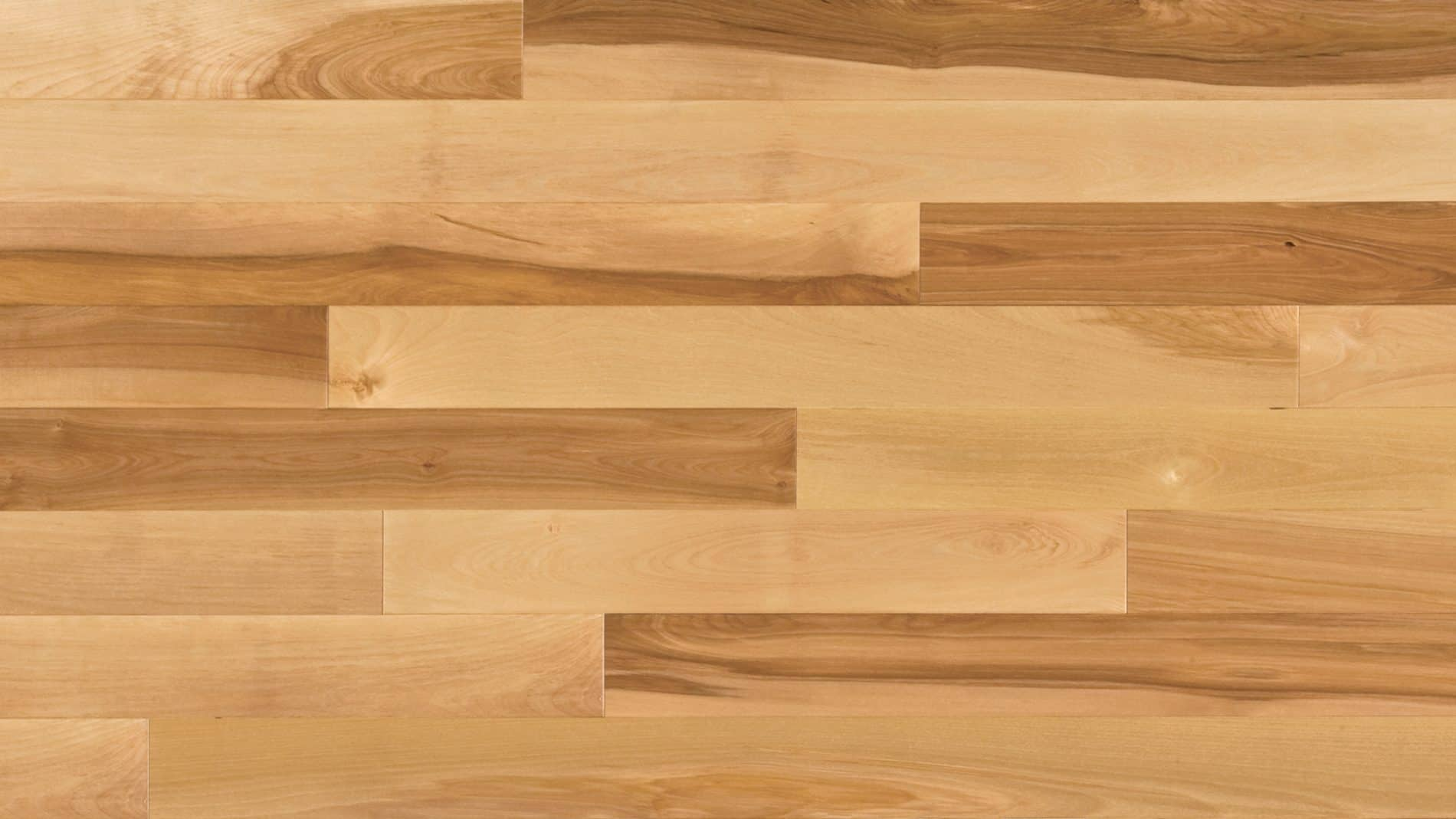 Birch hardwood flooring home flooring reference for Birch hardwood flooring